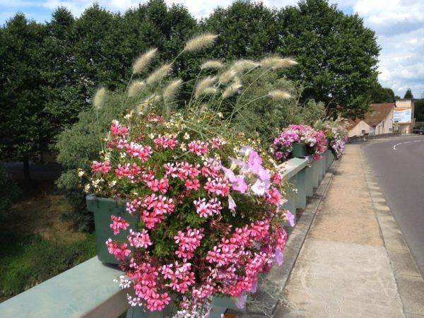 fleurs tournus